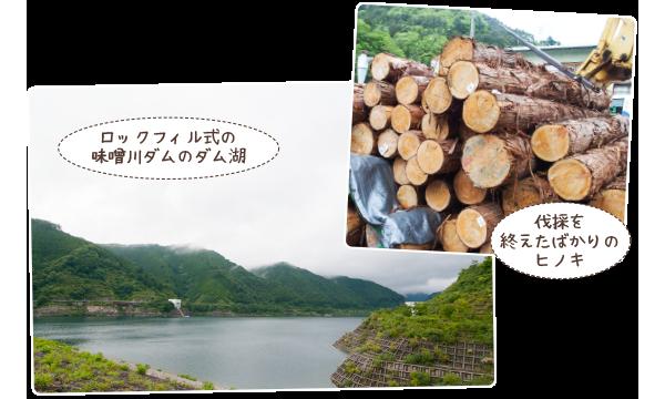 伐採現場・ダムなどの見学