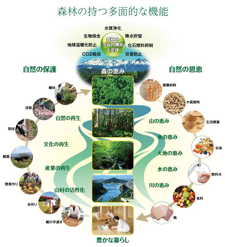 森林の持つ多面的機能